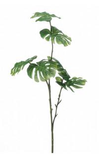 branche PHILODENDRON MONTSERA mini 72 cm