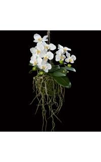 phalaenopsis ORCHIDEE artificielle à suspendre 46 cm