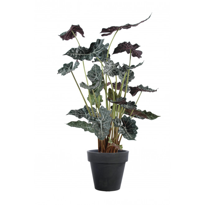 Alocasia Bush artificiel 110 cm