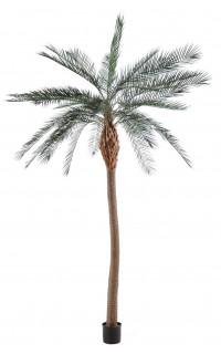 palmier PHOENIX artificiel tronc large  340 cm
