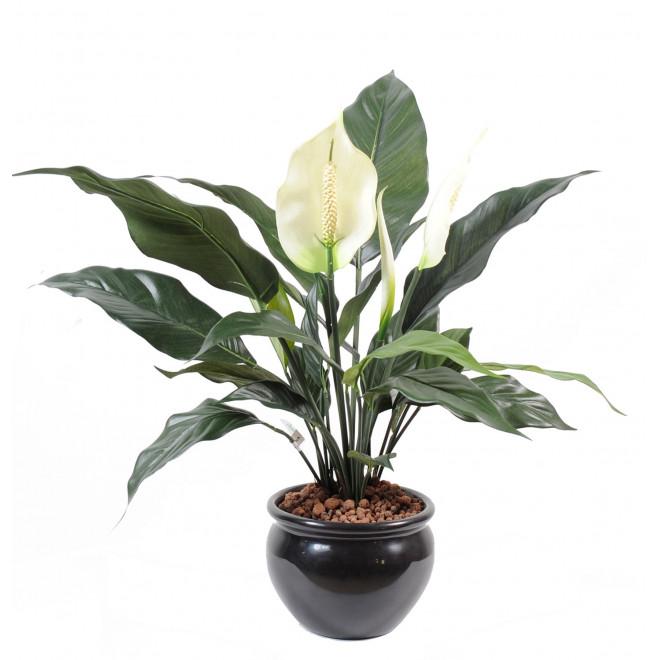 SPATHIPHILUM artificiel 1 fleur 2 boutons 53 cm