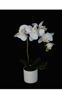 PHALAENOPSIS artificielle en pot 39 cm