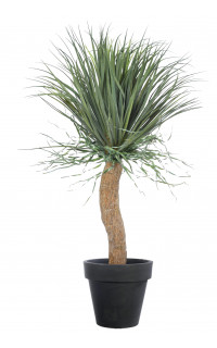 BEAUCARNEA recurvata artificiel 115 cm