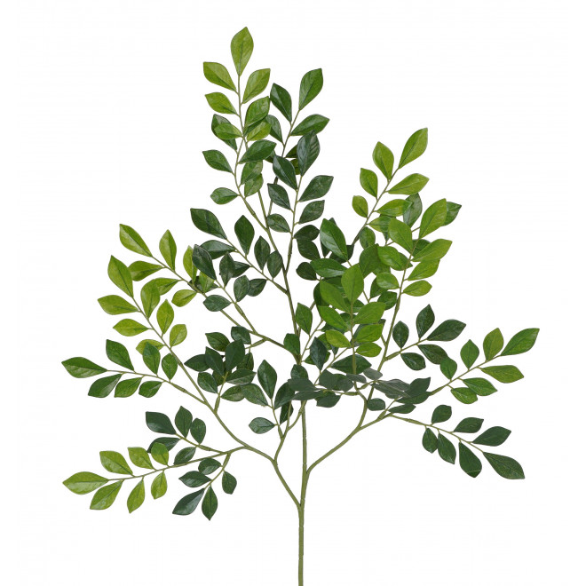 branche MURRAYA artificiel 70 cm