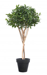LAURIER artificiel du PORTUGAL ou Prunus Lusitanica 150 cm