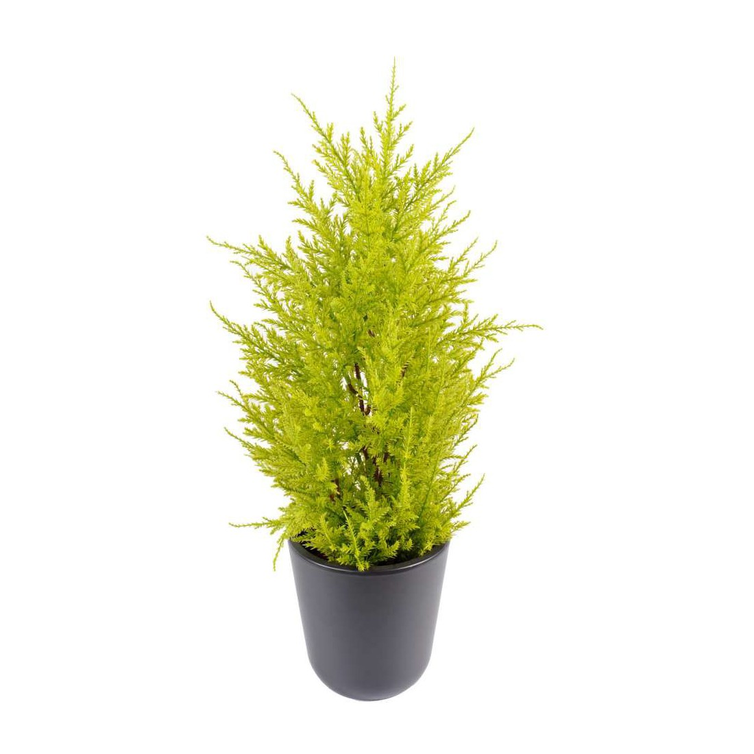 cypres artificiel mini jaune vert 55 cm juniperus cypr s artificiels reflets nature lyon. Black Bedroom Furniture Sets. Home Design Ideas