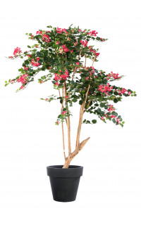 BOUGAINVILLEE artificiel racine 160 cm