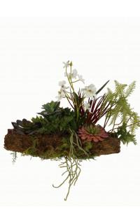 composition Phalaenopsis ORCHIDEE et SUCCULENTE artificielle sur socle 40 x 30 cm à suspendre ou à poser