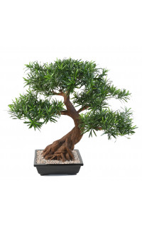 BONSAI artificiel PODOCARPUS en coupe 80 cm