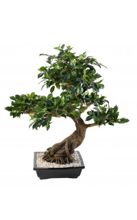BONSAI artificiel FICUS en coupe 80 cm