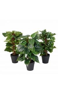 plante artificielle 36 cm tuteur coco