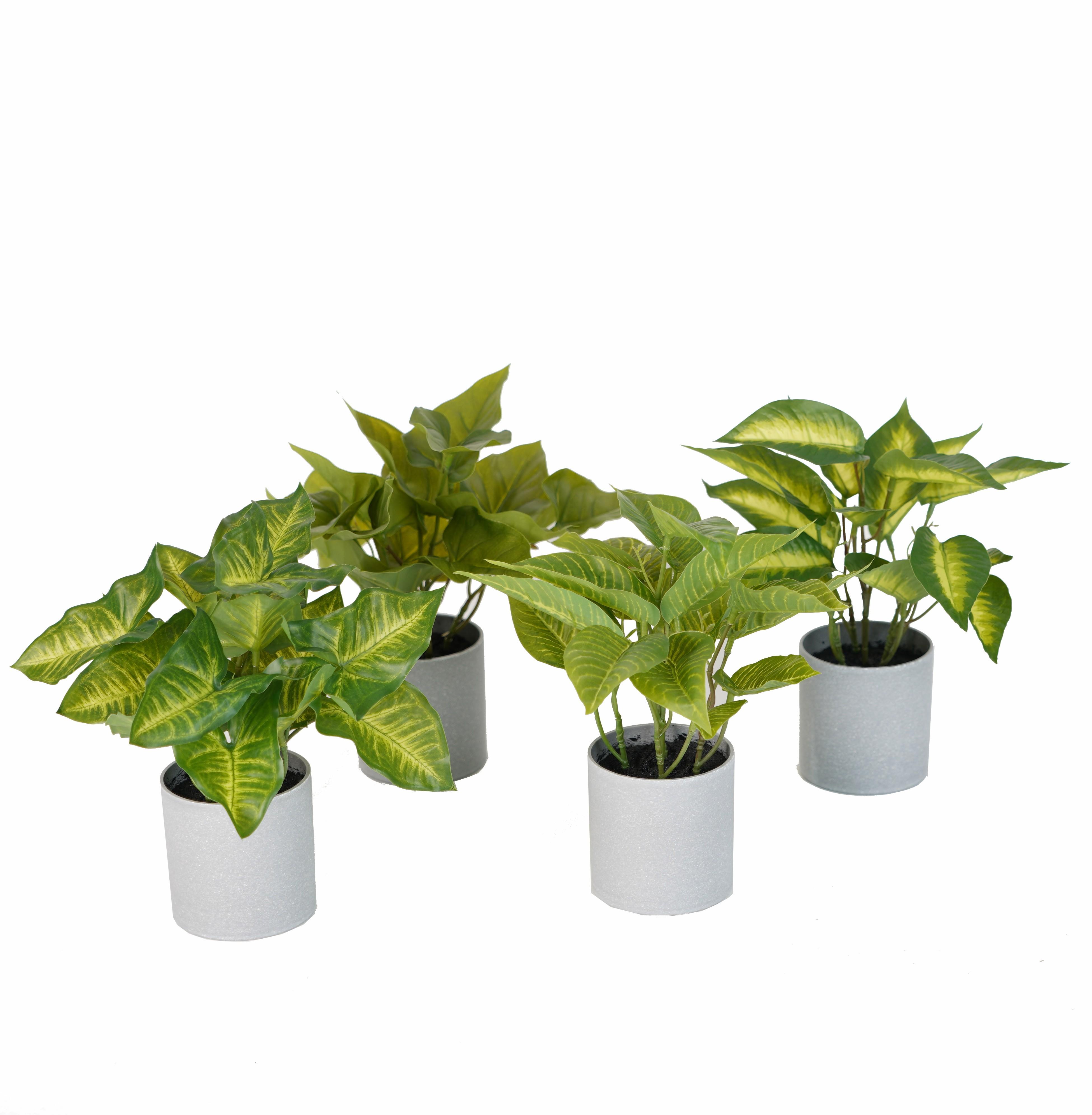 Petites Plantes Fleuries En Pot mini plante artificielle 24 cm en pot - mini plantes