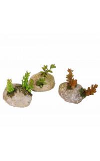 SUCCULENTES artificielles sur rocaille 11 cm