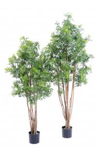 ARALIA artificiel MING NITIDA  150 et 180 cm