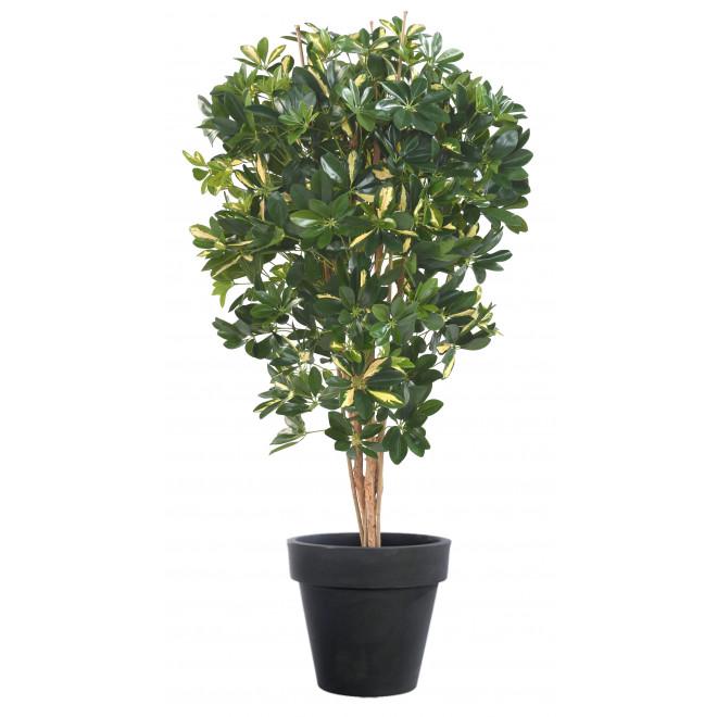 SCHEFFLERA artificiel vert ou vert/jaune 110 et 150 cm