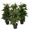 Mini plante grimpante artificielle 45 cm sur tuteur coco