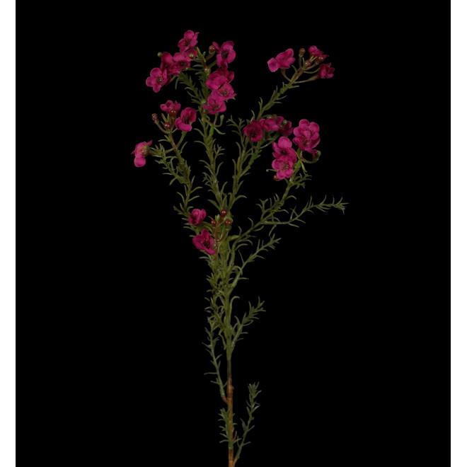 WAX artificiel ou fleur de cire 65 cm