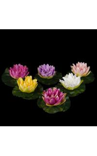 lotus flottant diamètre 10 cm