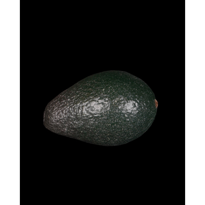 AVOCAT artificiel 10,5 cm