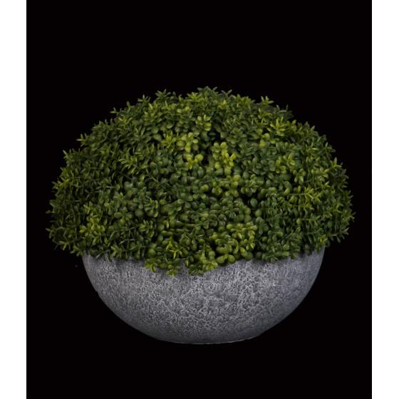 1/2 boule artificiel BUIS diam 19 cm en pot