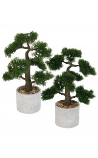 BONSAI Cyprès ou Pin artificiel 50 cm en pot gris béton
