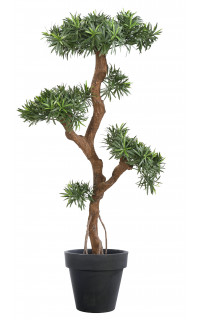 BONSAI artificiel PODOCARPUS 210 cm