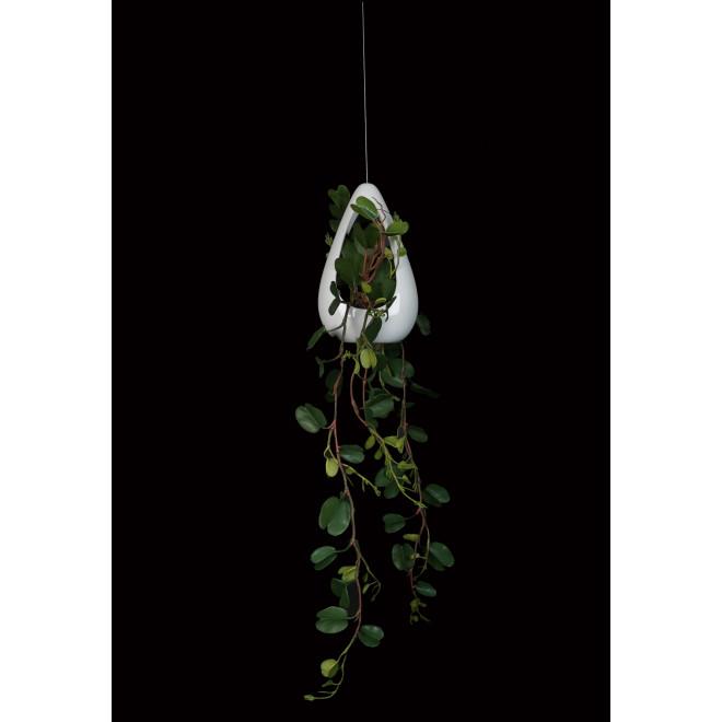suspension lierre ou philo ou bauhinia 70 cm