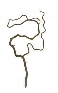 branche SALIX TORTUEUX artificielle 45 cm
