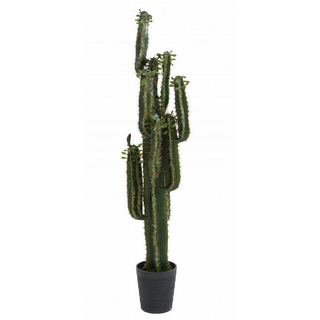 CACTUS artificiel finger 150 et 185 cm avec feuilles