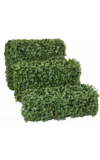 HAIE artificielle LIERRE structure métallique 30 et 55 cm