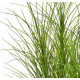 HERBE artificielle grass 90 cm