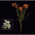 WAX artificiel ou fleur de cire 78 cm