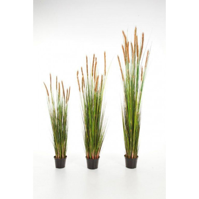 GRANDES HERBES artificielles plumeau brun  120 à 180 cm