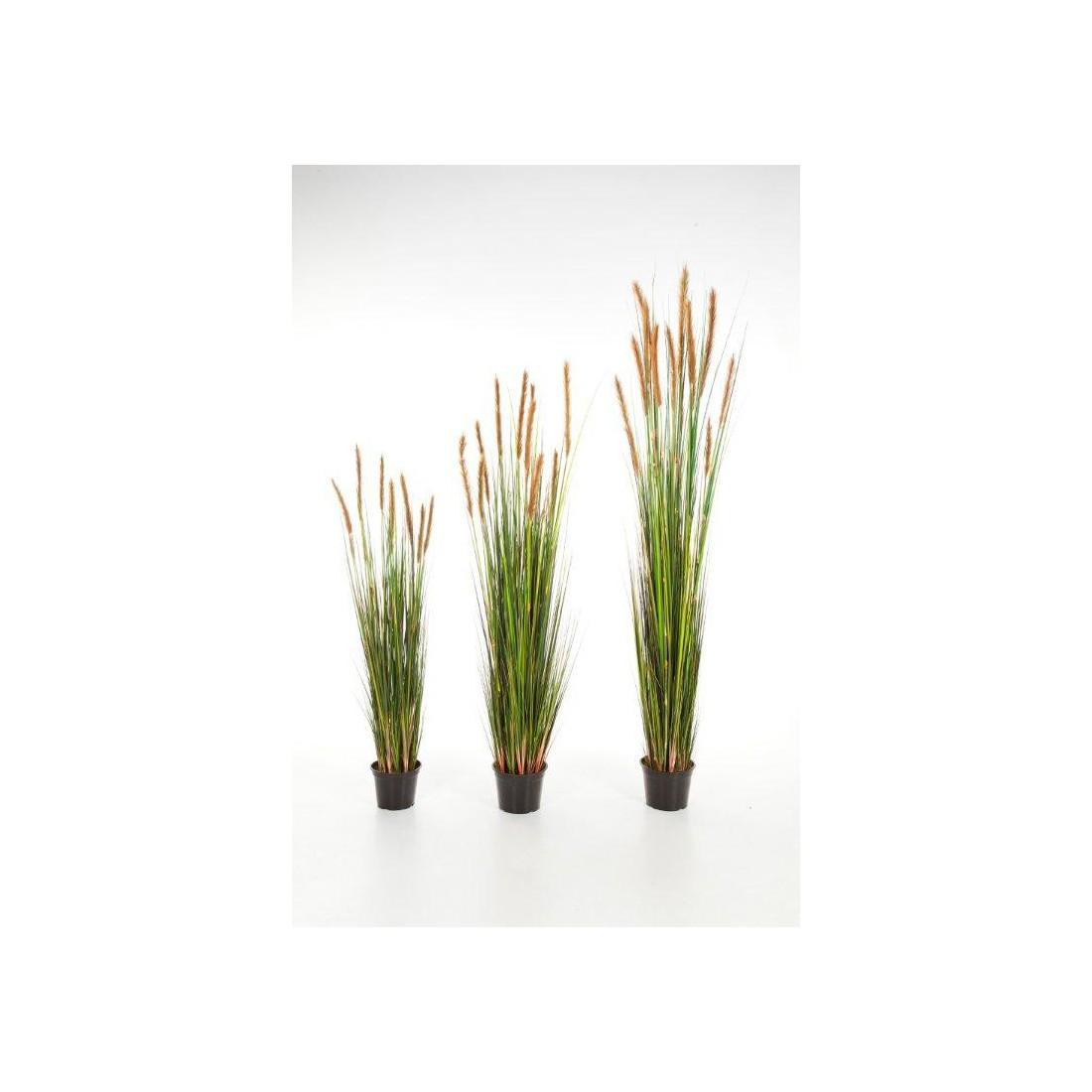 Pot Plastique Grande Taille grandes herbes artificielles plumeau brun 120 à 180 cm
