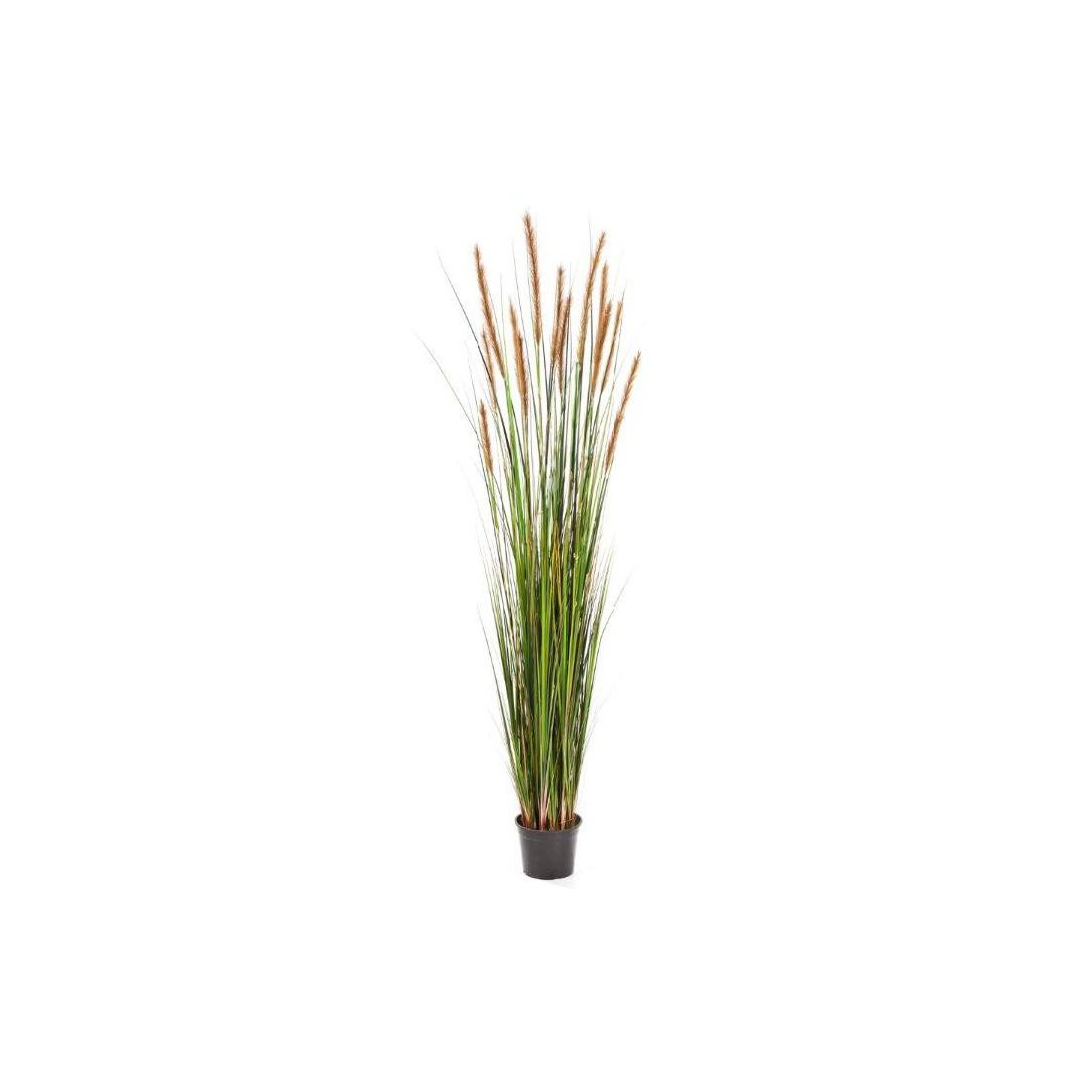 herbe de roseau artificielle 150cm graminees gramin es artificielles artificielles reflets. Black Bedroom Furniture Sets. Home Design Ideas