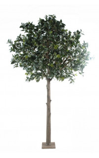 ARBRE FRUITIER artificiel (CAMELIA JAPONICA TREE) 300 cm