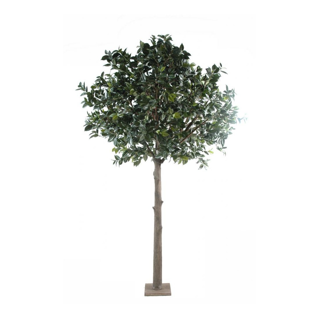 Arbre fruitier artificiel camelia japonica tree 300cm for Arbre artificiel exterieur