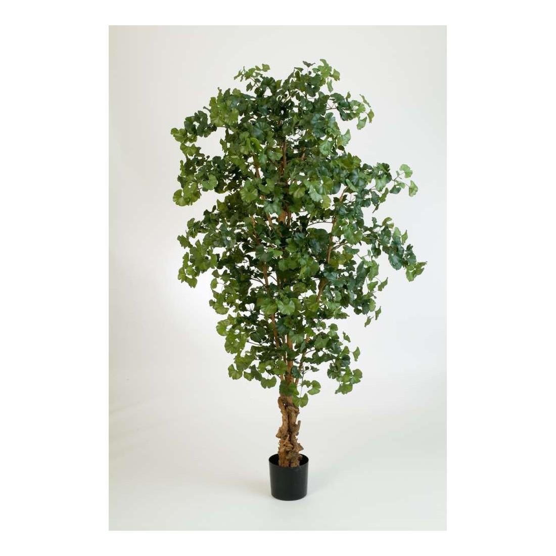 ginkgo artificiel foret arbre autres arbres autres arbres artificiels artificielles reflets. Black Bedroom Furniture Sets. Home Design Ideas