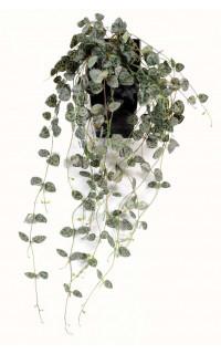 CEROPEGIA artificiel (chaine des coeurs) 60 cm