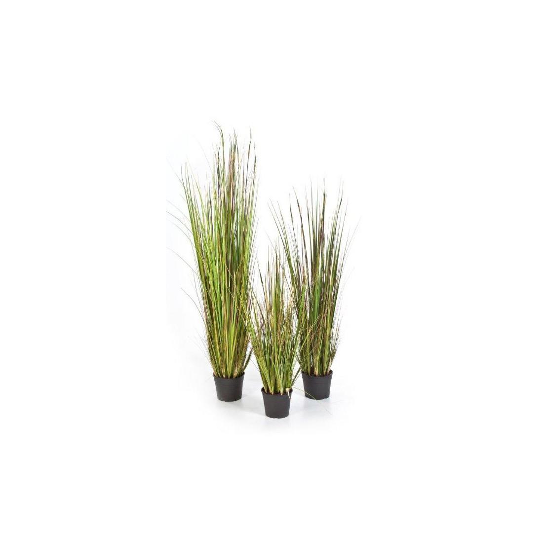 deco jardin avec tige de bambou deco jardin japonais design pour dco jardin japonais vente en. Black Bedroom Furniture Sets. Home Design Ideas
