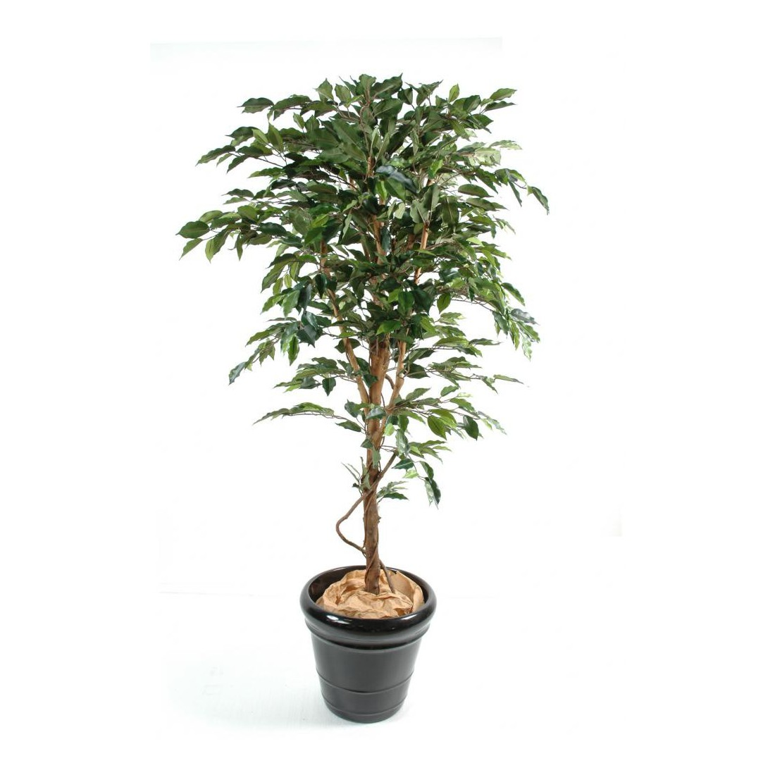 Ficus artificiel tronc simple grandes feuilles vert et for Ficus artificiel