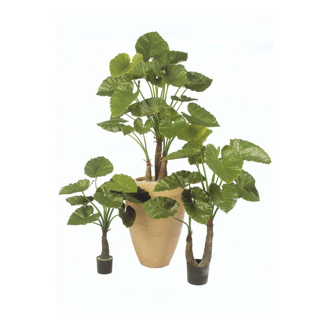 Alocasia calidora artificiel 80 120 cm autres arbres for Plantes a commander