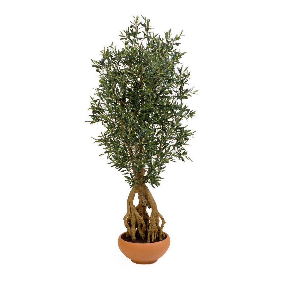 Olivier artificiel new racine 175 cm arbres mediterraneens for Arbre factice
