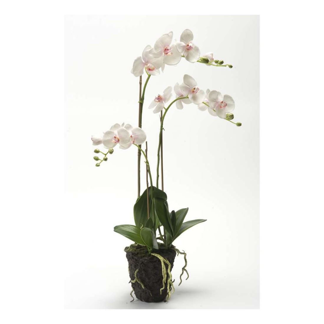 composition phalaenopsis orchid e artificielle de 80 cm fleurs synth tiques en ligne. Black Bedroom Furniture Sets. Home Design Ideas