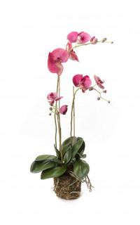 composition Phalaenopsis ORCHIDEE artificielle 80 cm