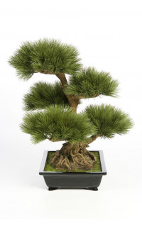 BONSAI artificiel PIN 60 cm