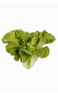 Salade LAITUE artificielle 20 cm