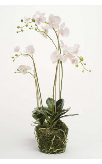 composition Phalaenopsis ORCHIDEE artificielle 90 cm blanc/rose