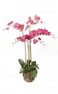 composition Phalaenopsis ORCHIDEE artificielle 110 cm