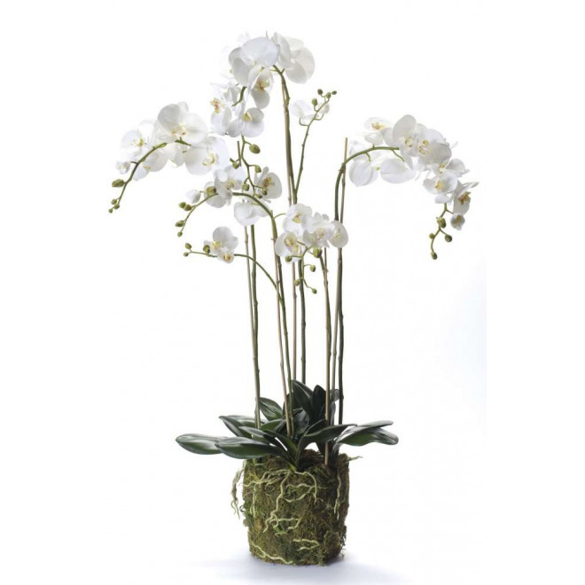 composition Phalaenopsis ORCHIDEE artificielle 130 cm